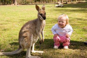 Joey_Kangaroo_And_Girl_600
